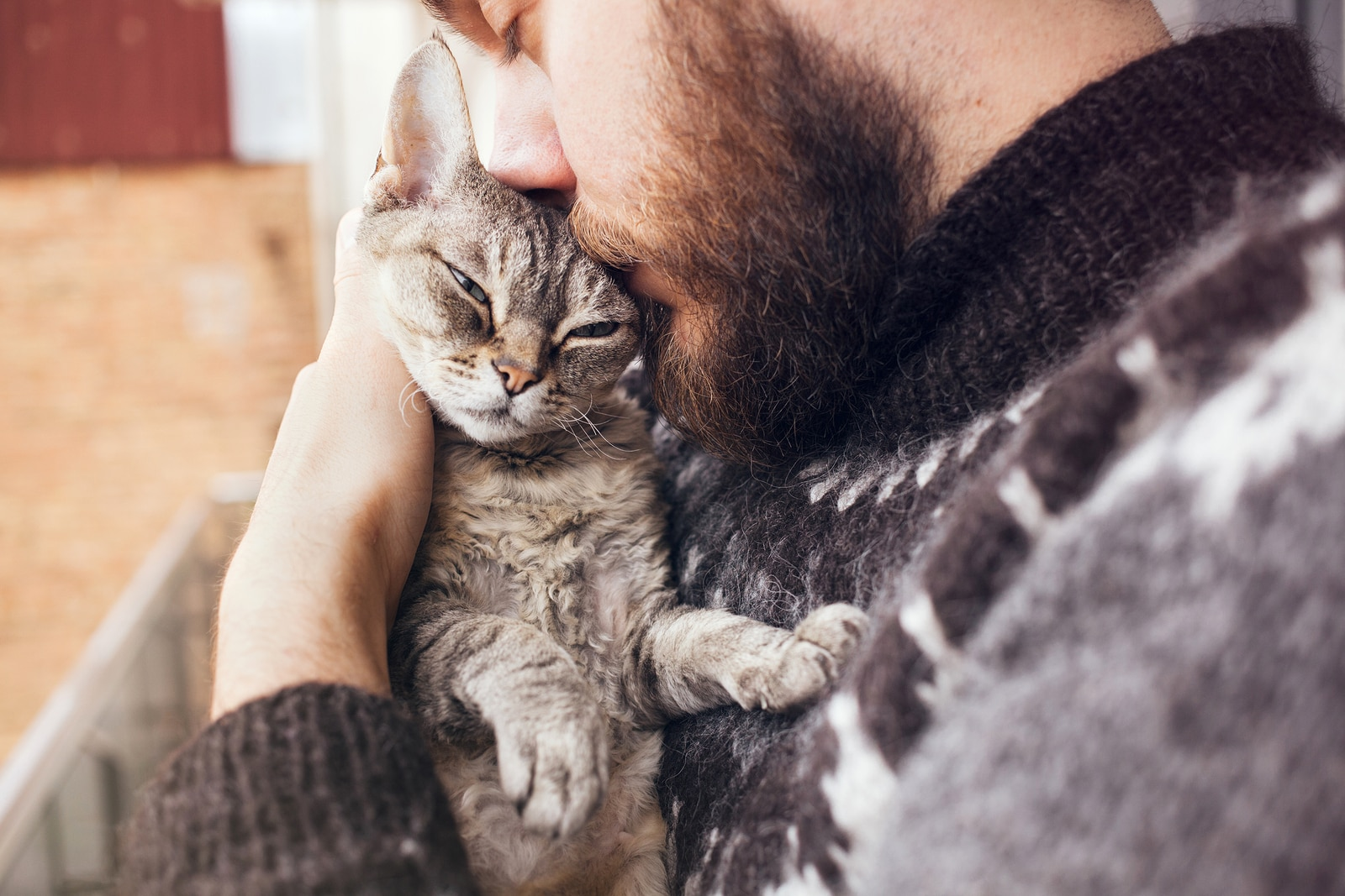 Bearded man hugging a gray cat closely to his chest.