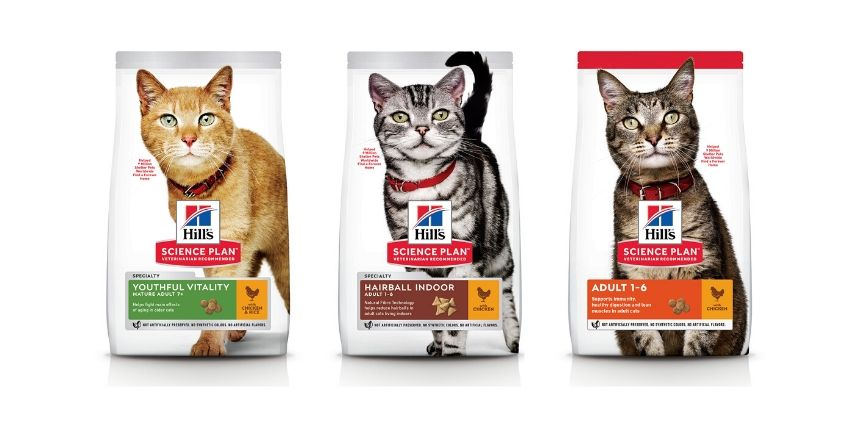 Nutrition Every Cat Needs